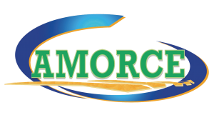 l_Logo_Amorce_HD_4
